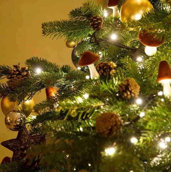 Cardinal Christmas | Christmas Decorations